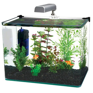 5 gallon Radius Glass Aquarium Kit
