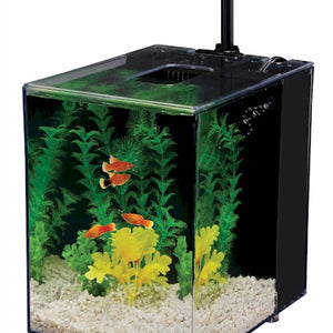 Black Prism Nano Aquarium Kit