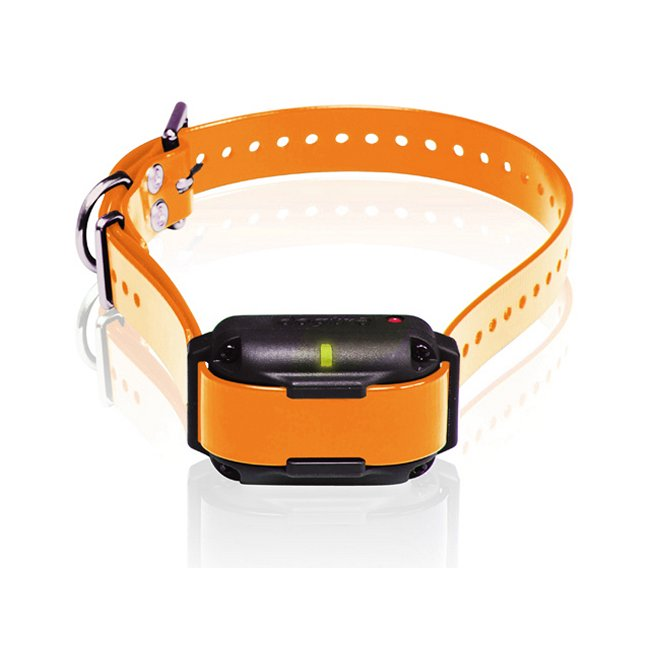 Orange Dogtra Edge RT Trainer Extra Collar