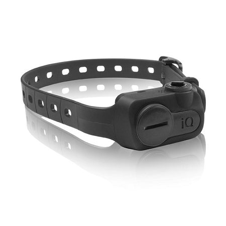 Black  iQ No Bark Collar