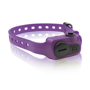 Purple  iQ No Bark Collar