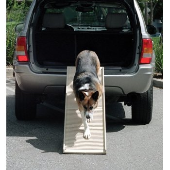 Folding PetStep Dog Ramp