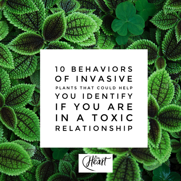 10 Behaviors of Invasive Plants That Could Help You Identify If You are in a Toxic Relationship