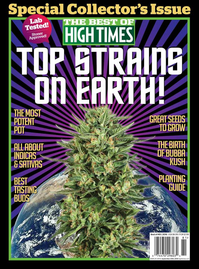 best of high times 81   top strains on earth shop