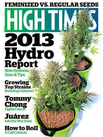 HIGH TIMES Magazine February 2013 - Issue 445