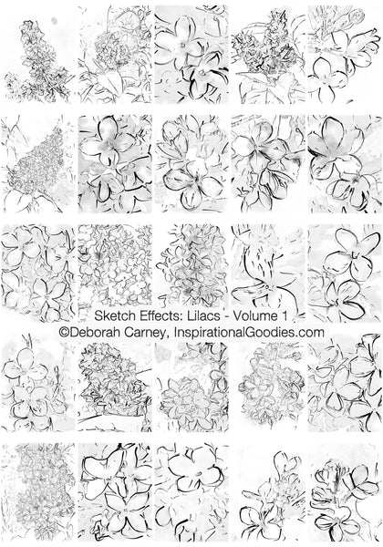 PDF Download: Sketch Effects: Lilacs - Volume 1: Coloring Books for Adults