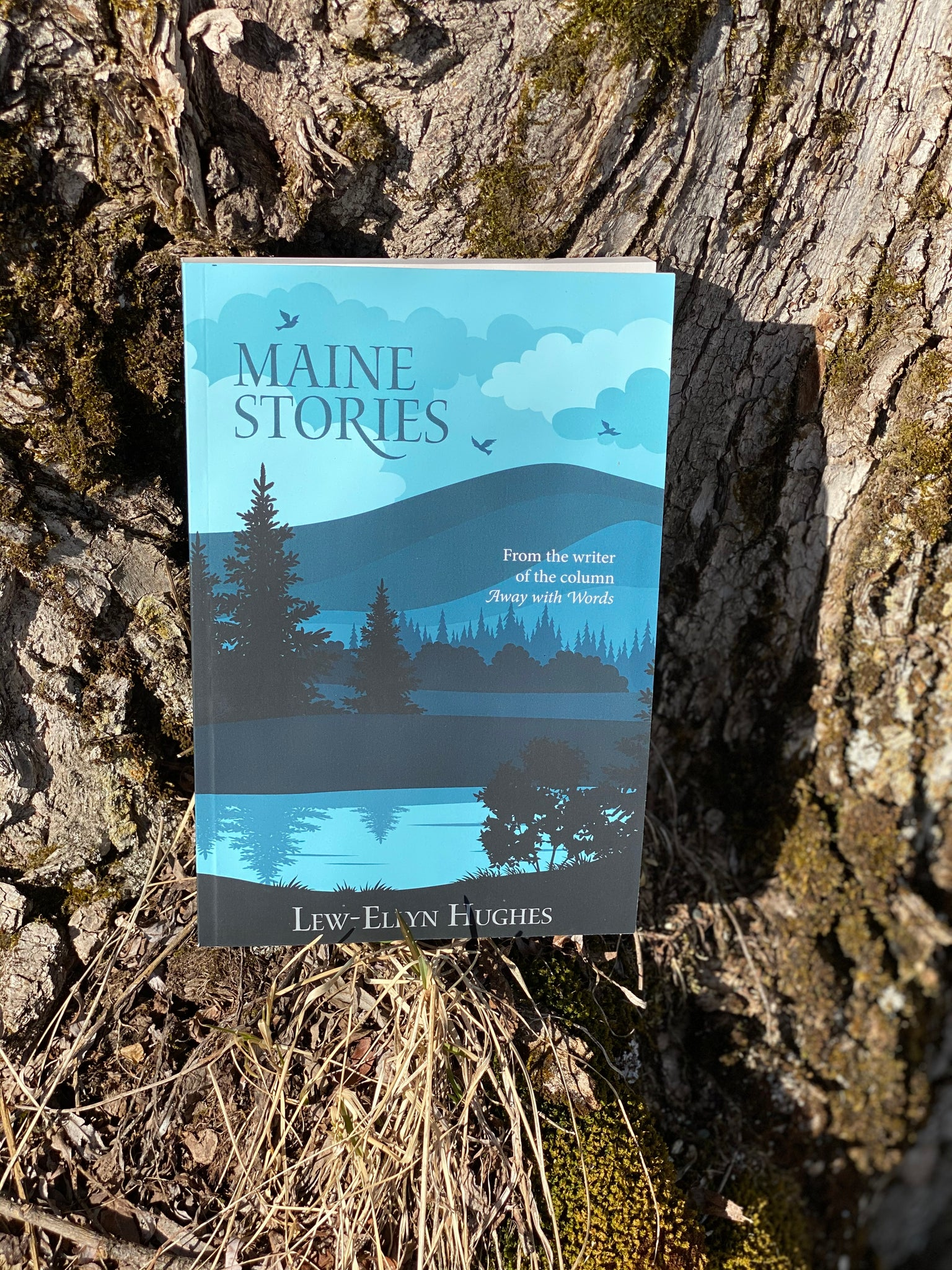 Maine Author  MAINE STORIES   By Lew-Ellen Hughes