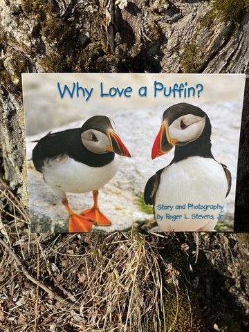 Maine Author WHY LOVE A PUFFIN by Roger L. Stevens