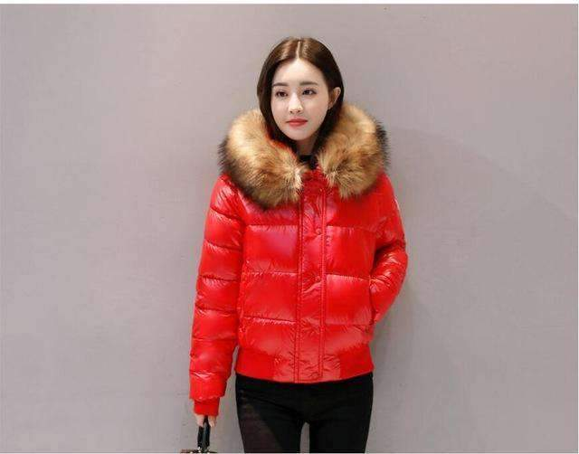 Womens Cotton Padded Parkas Jackets-[product_tag]-My MALL Metro