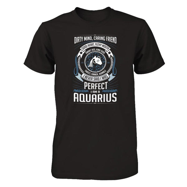 I am a Aquarius Next Level - Unisex Fitted Tee / Black / XS Shirts