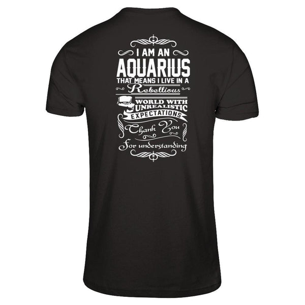 I'm an Aquarius Next Level - Unisex Fitted Tee / Black / XS Shirts