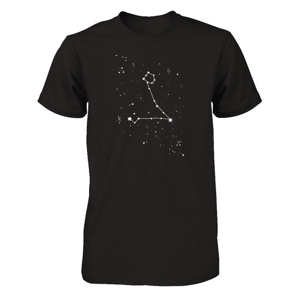 Pisces Constellation Next Level - Unisex Fitted Tee / Black / XS Shirts