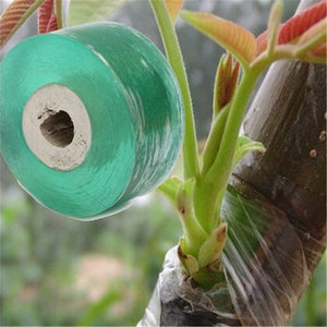 Grafting Tape for the prevention of disease in your Shrubs, Trees or Fruit Tree PVC bind belt or tie Tape 2CM x 100M / 1 RolI