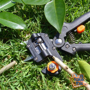 Grafting Secateurs Kit with 2 Blades for Tree Grafting, Secateurs or Branch Pruner