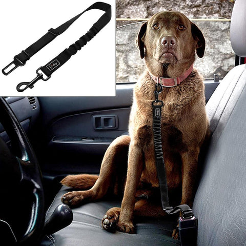 Adjustable Pet Seat Belt - Safety Leads Vehicle Seat-belt Harness with Elastic Bungee Leash - I'LL TAKE THIS