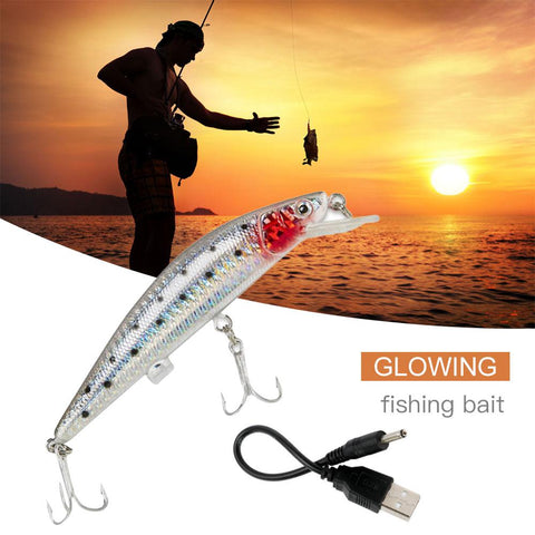 Image of Fishing Lure that Twitches, Flashes & Buzzes in Water to Mimic Wounded Bait Fish - USB Rechargeable Fishing Lure - I'LL TAKE THIS