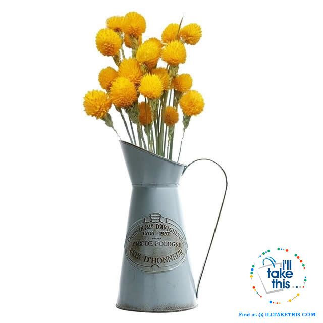 Ideal Vintage Pitcher shaped Vase with handle - Ideal indoor Decor for your Flowers/ Plants - I'LL TAKE THIS