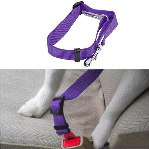 Image of Adjustable Pet Seat Belt/Safety Leads Vehicle Seat-belt Harness in 12 colors for the ultimate look - I'LL TAKE THIS