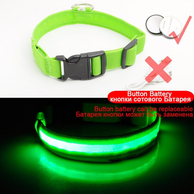 Led Dog Collar USB Charging or Batteries, 7 Colors - 6 Sizes XS ~ XXL - I'LL TAKE THIS