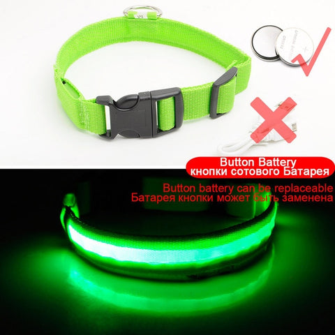 Image of Led Dog Collar USB Charging or Batteries, 7 Colors - 6 Sizes XS ~ XXL - I'LL TAKE THIS