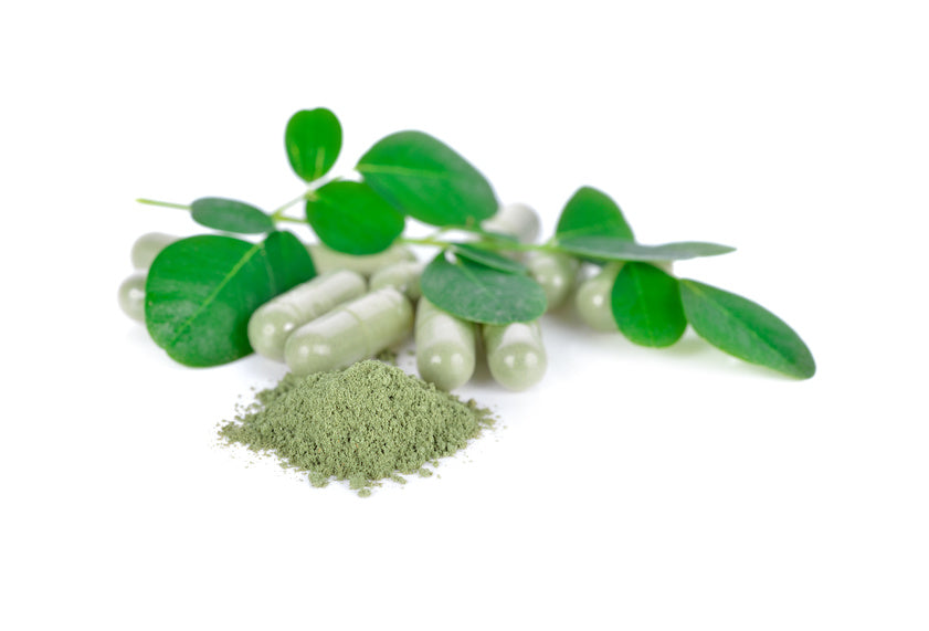 Moringa - Miracle tree of hope