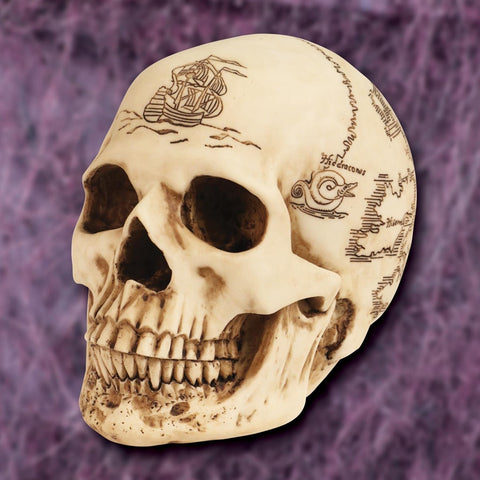 Treasure Map Skull