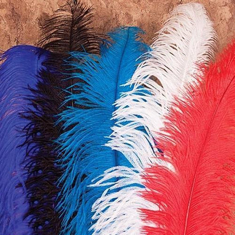 Feather Plumes - costumesandcollectibles
