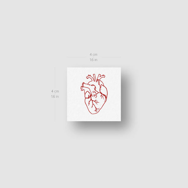 Red Anatomical Heart Temporary Tattoo (Set of 3)
