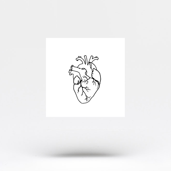 Anatomical Heart Outline Temporary Tattoo (Set of 3)