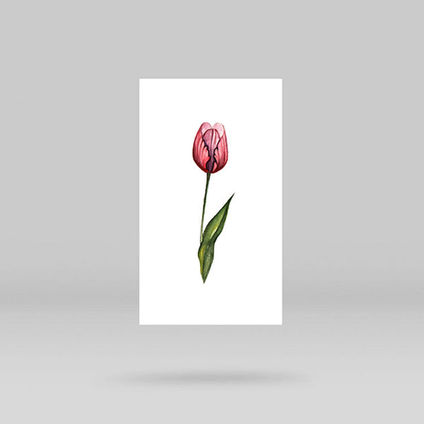 Tulip Temporary Tattoo By Lena Fedchenko (Set of 3)