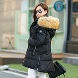 Down Jacket - Valerie Vergar