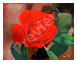 Rose- Fine Art Canvas Print- Wall Art - Ankansala