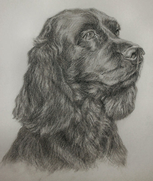 Custom portrait drawing - 11 x 14  (sample image shown) *Customer favourite*