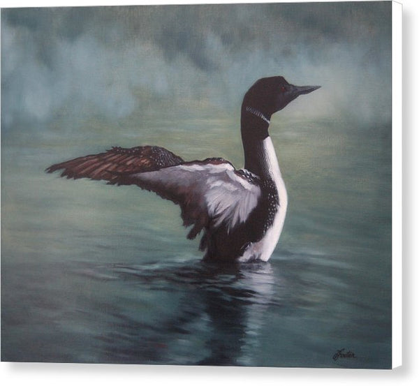 Opeongo Morning - Canvas Print of an Original Loon Painting