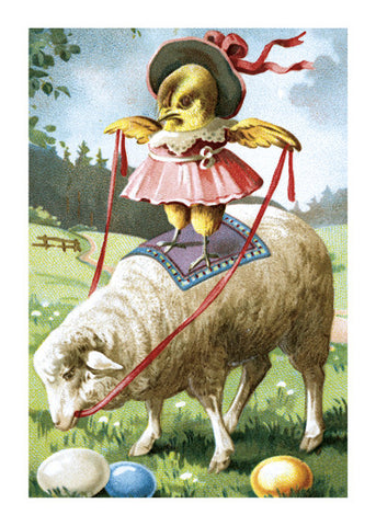Chick Riding Sheep Print