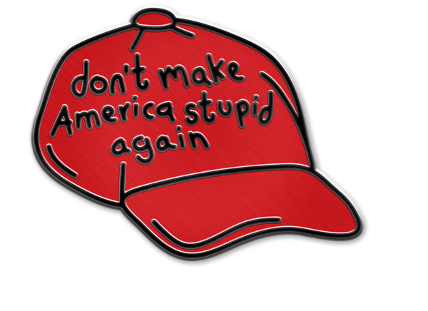 DON'T MAKE AMERICA STUPID AGAIN PIN