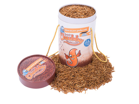 1.36kg (3 Lbs) Chubby Dried Mealworms Tub
