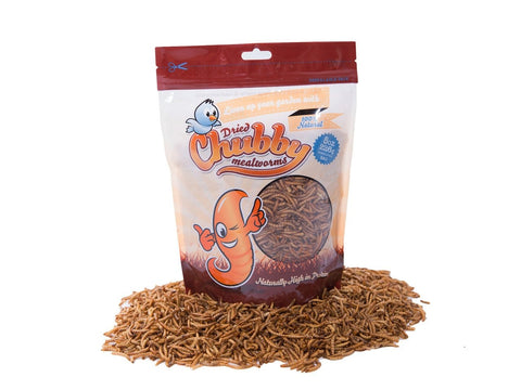 226g (8oz) Chubby Dried Mealworms