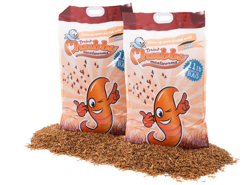 9.98Kg (22Lbs) Dried Chubby Mealworms -  - 1