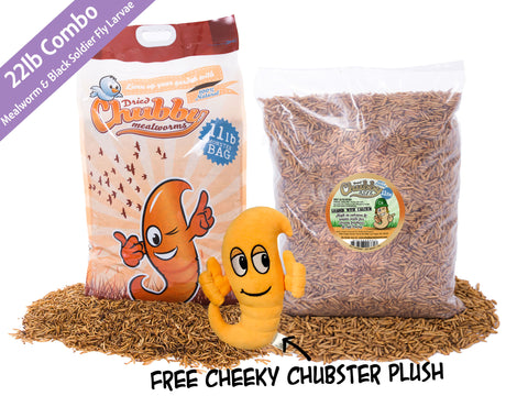 22lb Chubby Combo - 11lb Mealworms & 11lb Black Soldier Fly Larvae + FREE Chubster Toy
