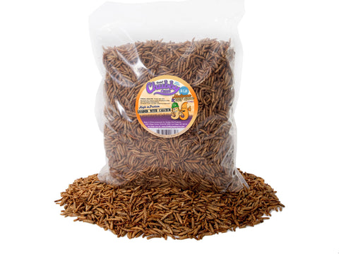 908g (2lb) Chubby Mix (Mealworm & Black Soldier Fly Larvae)