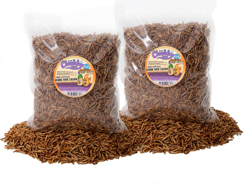 1.82Kg (4lb) Chubby Mix (Mealworm & Black Soldier Fly Larvae)
