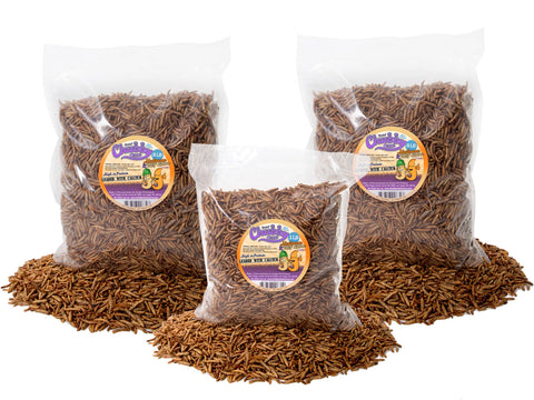2.27Kg (5lb) Chubby Mix (Mealworm & Black Soldier Fly Larvae)