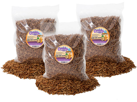 2.72Kg (6lb) Chubby Mix (Mealworm & Black Soldier Fly Larvae)