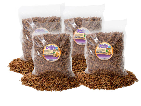 3.63 Kg (8lb) Chubby Mix (Mealworm & Black Soldier Fly Larvae)