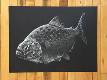 "Load image into Gallery viewer, ""Piranha"" by Janta Island"