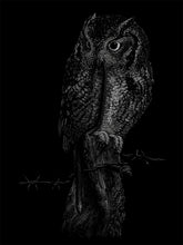"Load image into Gallery viewer, ""Owl"" by Janta Island"