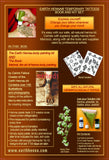 Earth Henna Body Painting Kit & Book Set