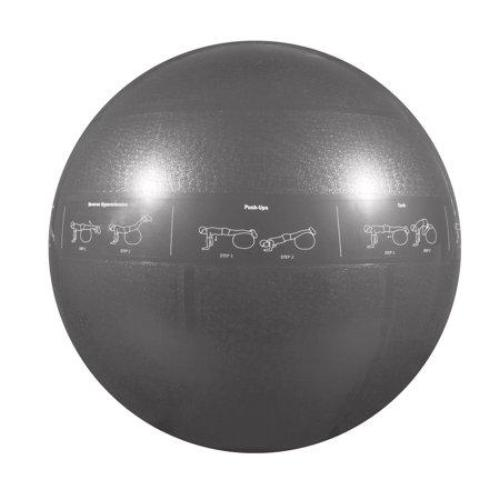 75cm ProBall 2000lb Stability Ball with Printed Exercises, DVD Training Manual & Pump - Gray - all best sales