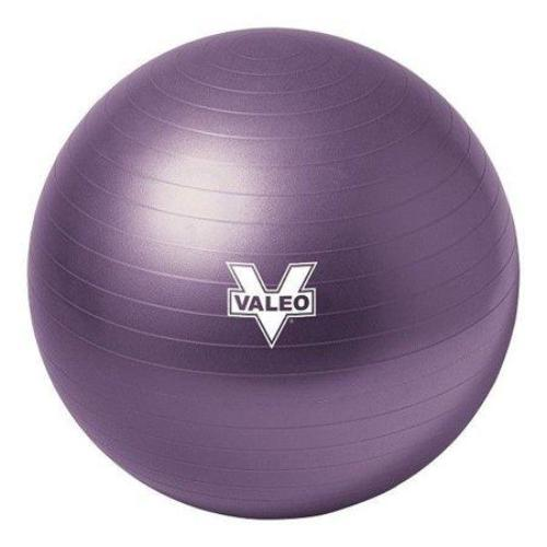 Valeo Anti-Burst 55cm Exercise Body Ball Includes High Volume 2-Way Action Air Pump And Includes Fitness Guide for Fitness, Stability, and Balance - all best sales